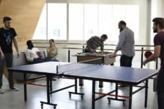 Ping Pong Tables Over Reinvesting: Are Startups Wasting Money?