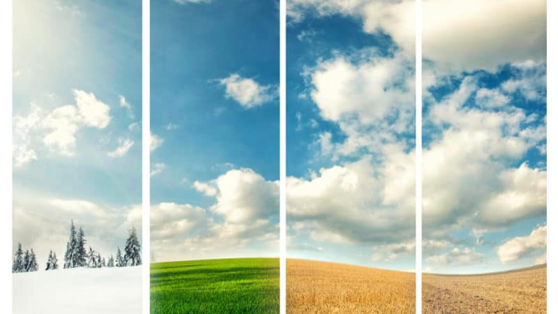 Yearly Trends: Your Guide To Managing A Seasonal Business